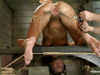 Her executor has a lot of experience when it's about naughty cunts like her. He shows where her place is and after he tied her on the table he ga